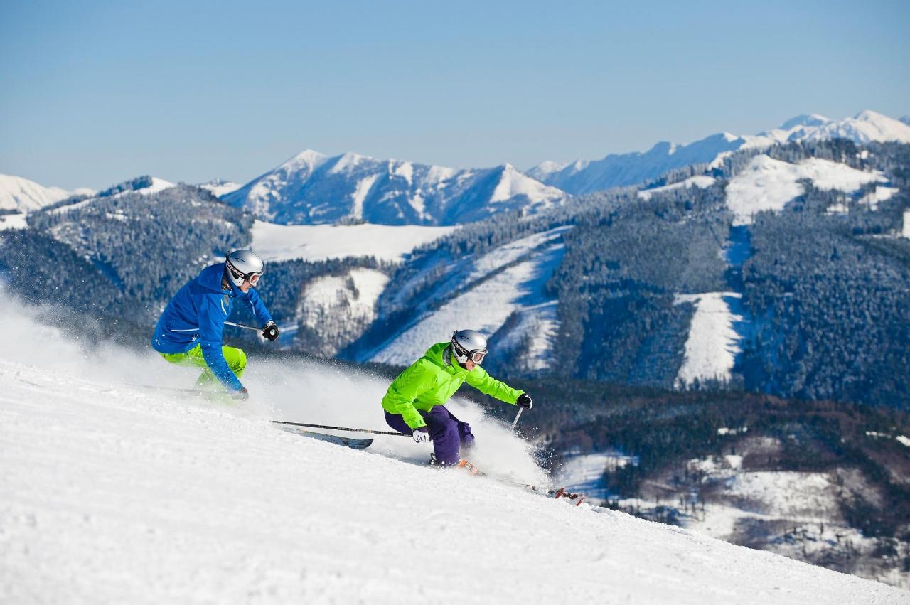 Гірські лижі Gaissau-Hintersee