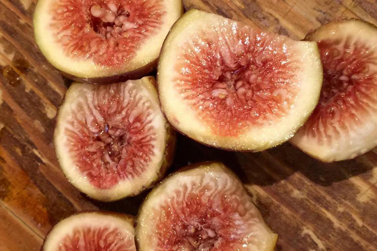 1920 figs.jpg