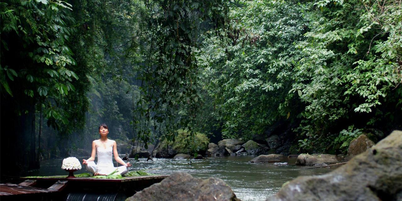 Meditasi.jpg