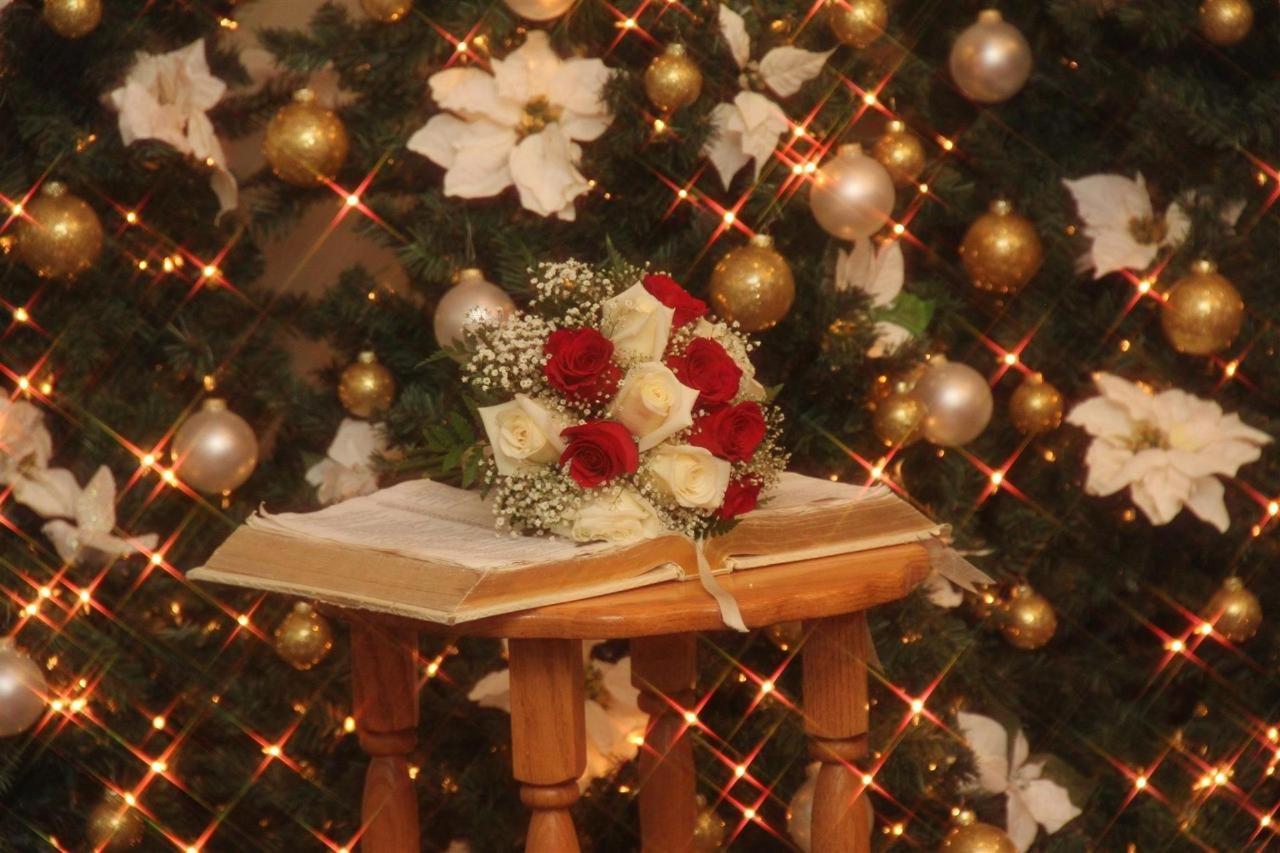 CATP - Christmastime 04.jpg
