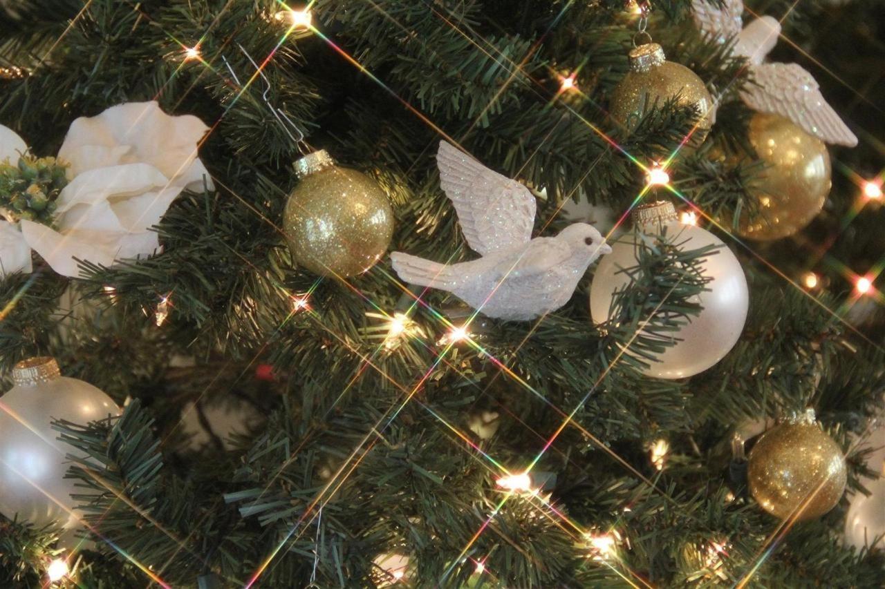 CATP - Christmastime 21.jpg