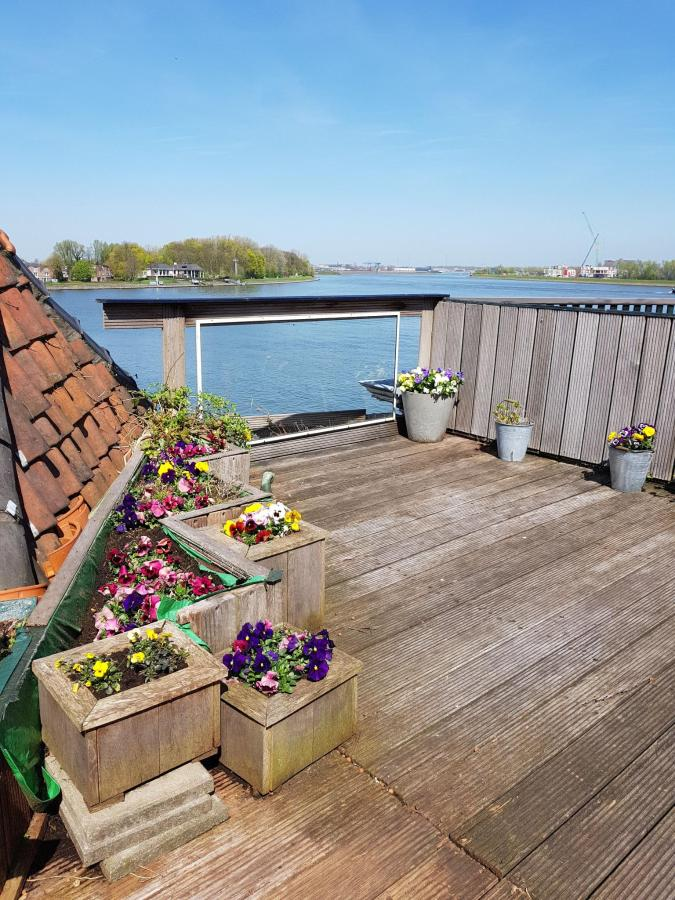 ROOFTERRACE WITH FLOWERS