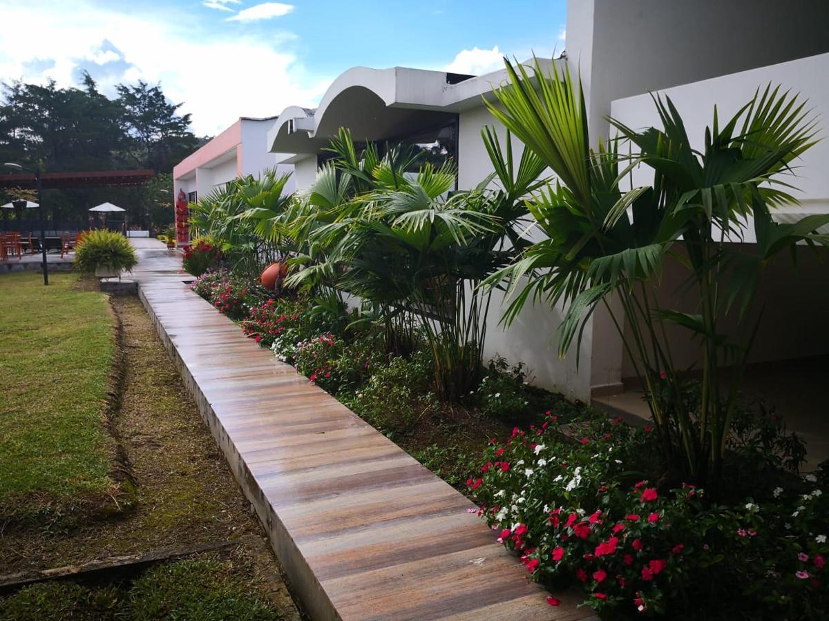 jardin04.jpeg