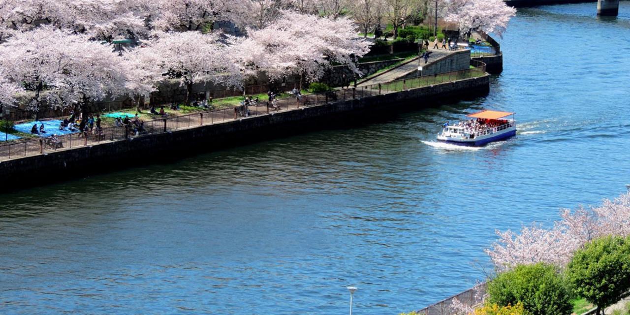 Spring_View (10).jpg