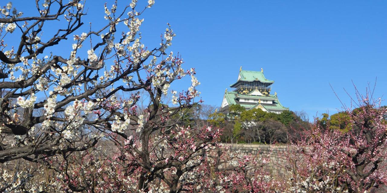 Spring_View (13).jpg