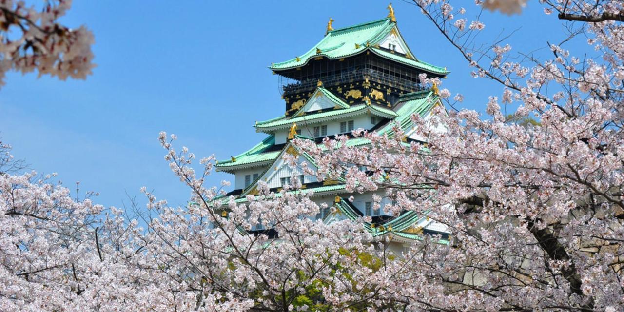 Spring_View (14).jpg