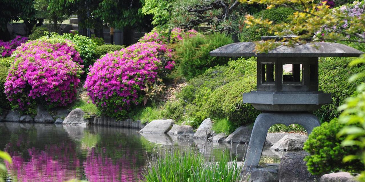 Spring_View (15).jpg
