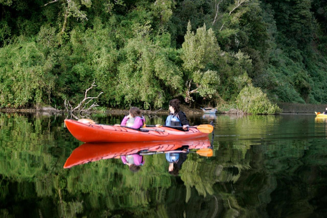 Kayak LE 1.jpg