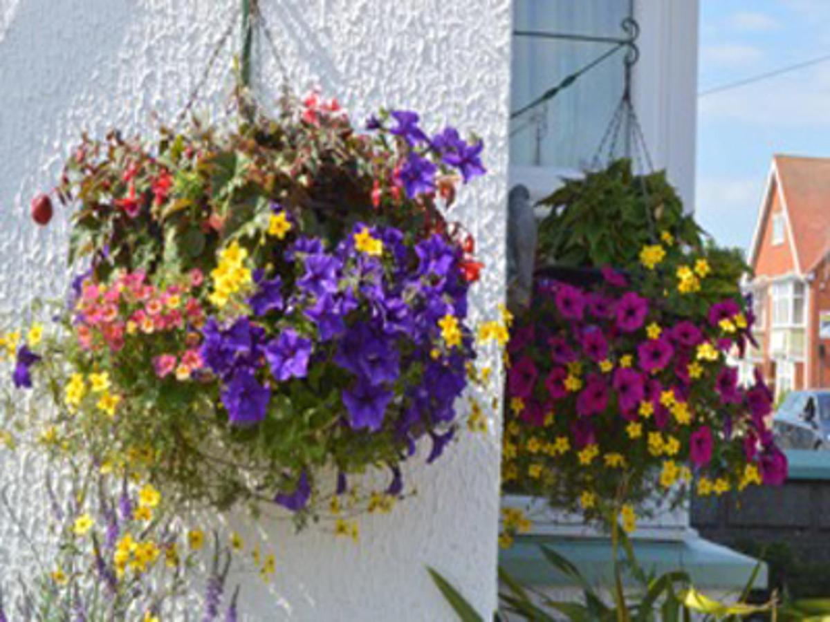 Hanging Flower Baskets at White Heather Guest House Mablethorpe