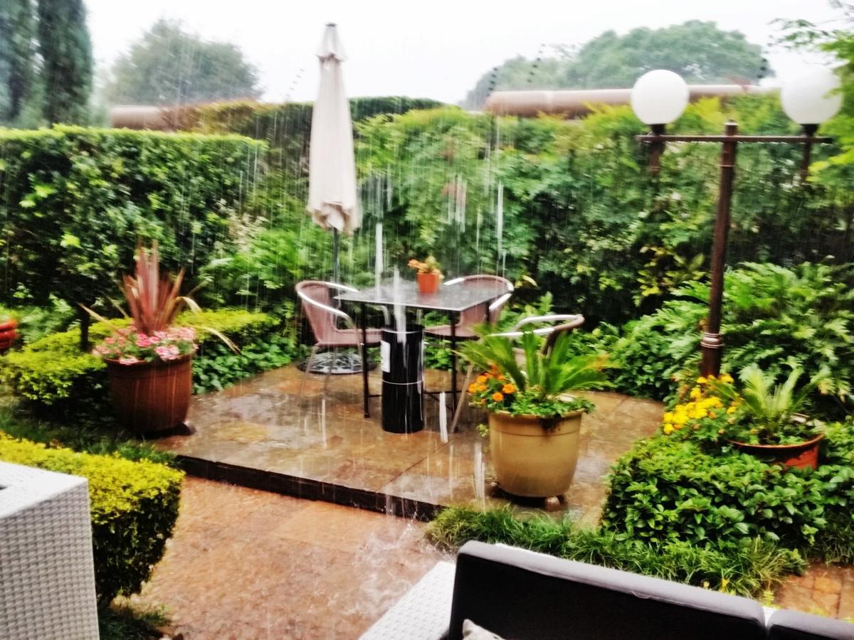 Rain in garden 2017.jpg