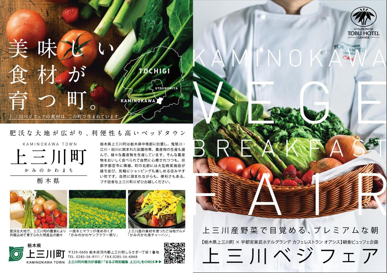 上三川ベジフェアA6リーフcs5外面w2880.jpg