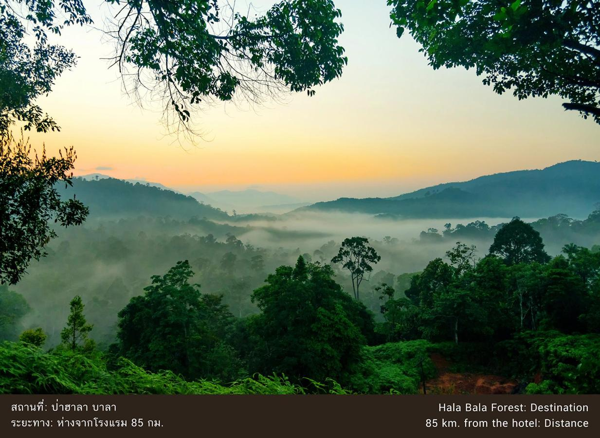 ป่าฮาลาบาลา.jpg