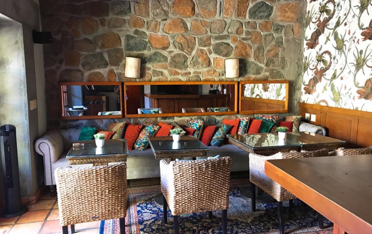 The Iguana Lounge