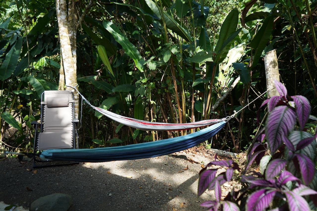 hamac sur la terrasse exterieure