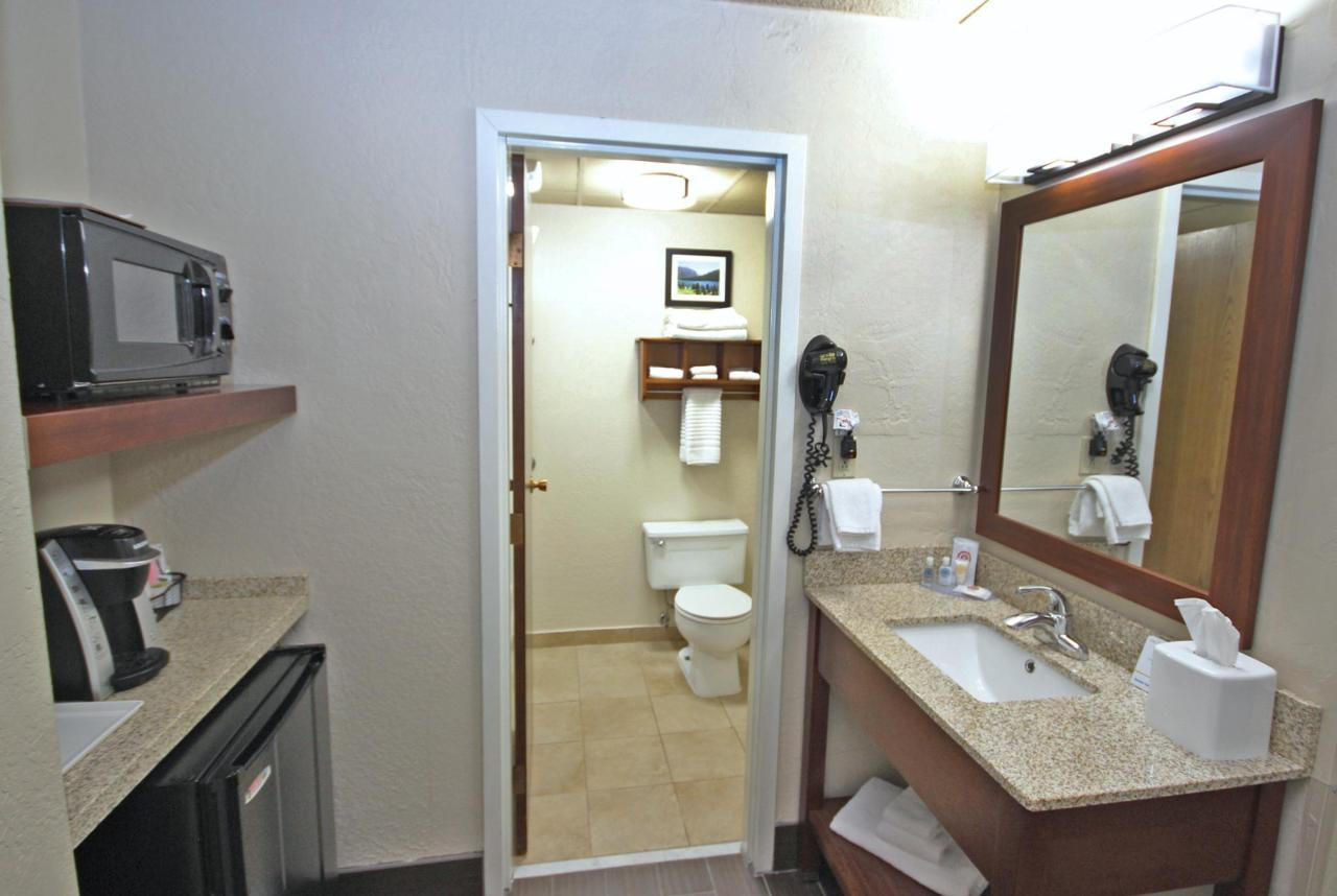 Standard King - bathroom & beverage center