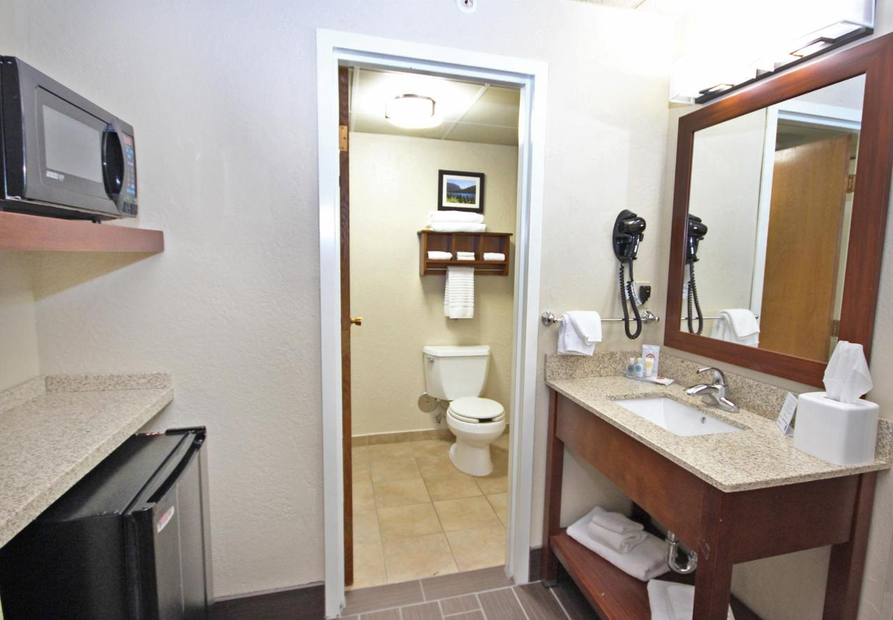 Family Suite bathroom 1