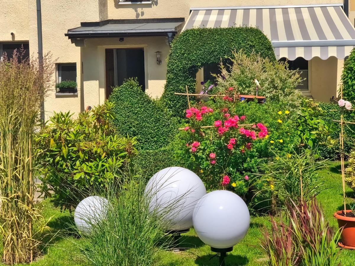 Garten und Markise über Terasse.jpeg