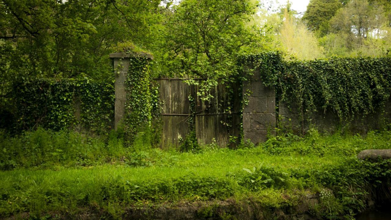 Canal Walk Kilkenny