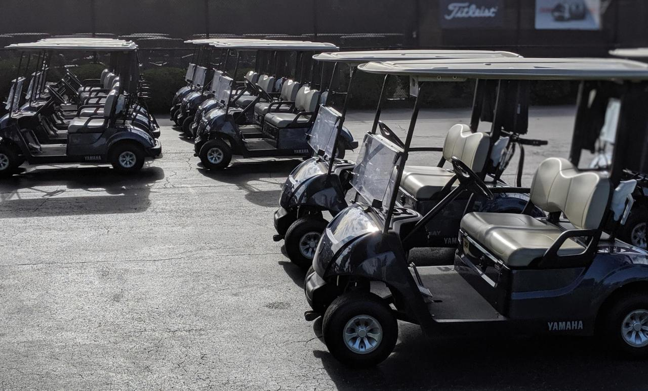 Golf cart fleet.jpg