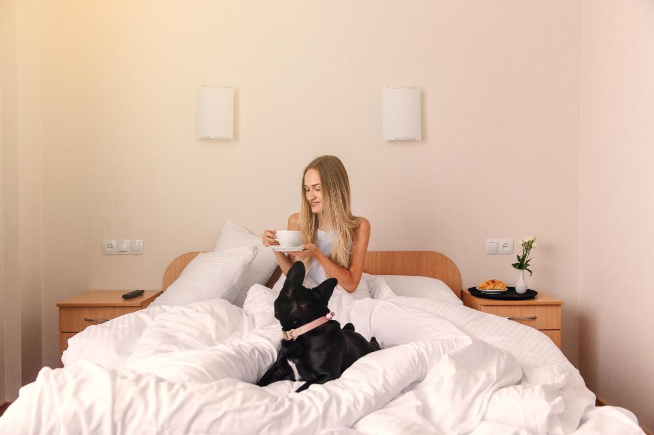 Hotel_Valmiera_Naktsmajas_Double_room 6.jpg