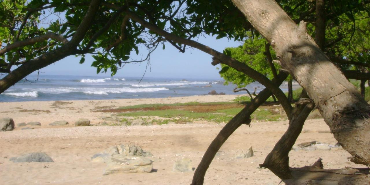 Beach 185.jpg