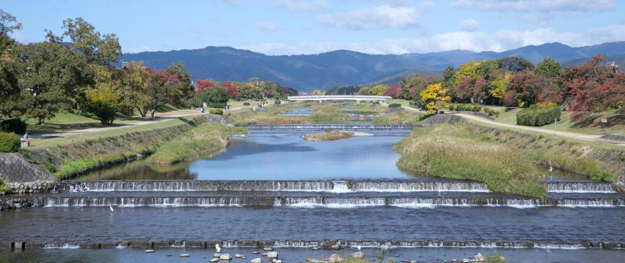 가을 카모 Kamogawa river in autumn