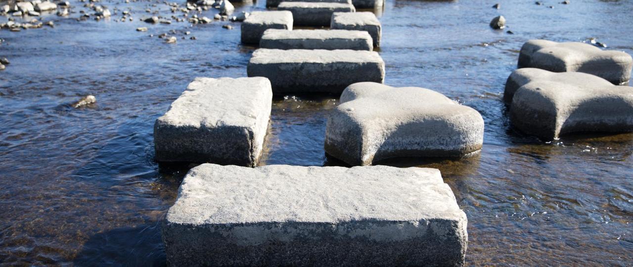 鴨川の飛び石 Kamogawa River